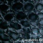 cocodrilo-gris