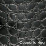 cocodrilo-negro